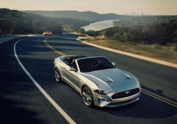 Ford Mustang 5.2L Shelby GT350R (M/T)
